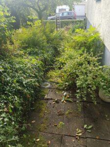 dsrr-gruenpflege-garten-balkon-terasse-gruenschnitt-vorgarten-wege-vorher